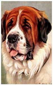 Dogs ,   St.Bernard . Lord Montgomery , artist signed