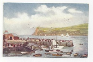 TUCK 397, Port Erin Harbour, England, 1900-10s; Boating and Yachting Facilities