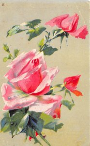 Roses 1908 Embossed Postcard Flowers Angola Indiana Cancel