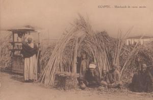 Dealers Sugar Cane Markets Marchands De Canne Sucree Egyptian Antique Postcard