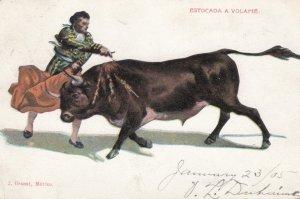 Bull Fighting ; Estocada a Volapie , 1905