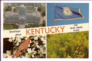 Greetings from KENTUCKY, The Blue Grass State