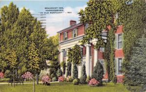 PALM BEACH FL~RUBBER TREE~G W MORRIS PUBL POSTCARD 1910s