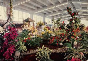 Hamburg International Flower Exhibition, Internationale Hallen Blumenschau