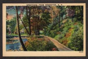 NY Greetings from BREWSTER NEW YORK PC Postcard