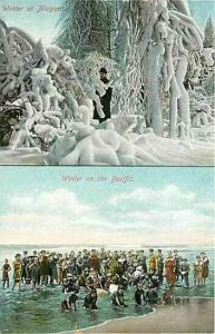 NY, Niagara, New York, Winter at Niagara, Winter on Pacific, Newman Post Card