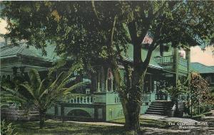 Honolulu Hawaii~Courtland Hotel~Steps Up to Veranda Through Palm Trees~1910
