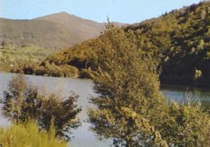 POSTAL 61286: Bosque agua