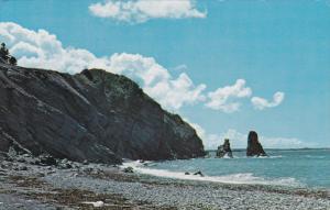 Presqu'ile, Cabot Trail , Cape Breton , Nova Scotia , Canada , PU-1955; Betwe...