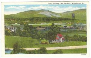 View showing Calf Mountain, Waynesboro, Virginia,30-40s
