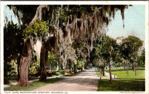 Oaks Bonaventure Cemetery Savannah GA Vintage Postcard
