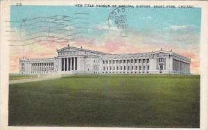 Illinois Chicago New Field Museum Of Natural History Grant Park 1933