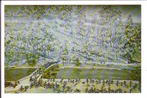 The Battle of Antietam Creek, Maryland,