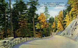 TN - Clingman's Dome. Skyline Drive in Autumn