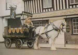Stamford Brewery Shire Horse & Dray at St Marys Street Postcard
