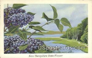 Purple Lilac State Flower NH Unused