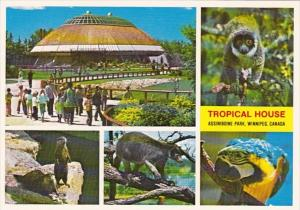 Canada Winnipeg The Tropical House Assiniboine Park