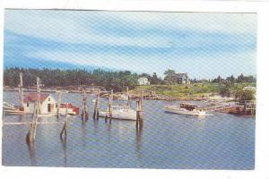 Decker Cove, Southport, Maine,   40-60s