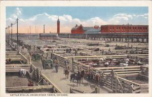 Illinois Chicago Cattle Stalls Union Stock Yards