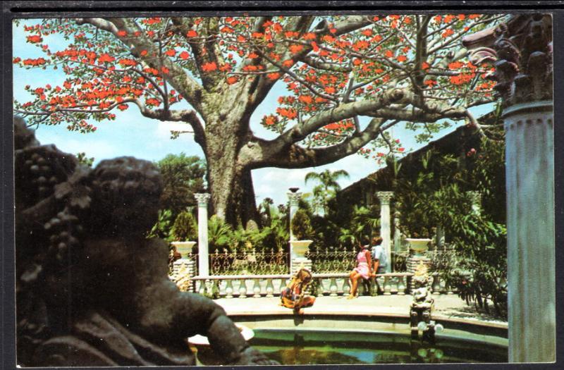 Kapok Tree,Tapok Tree Inn,Clearwater,FL BIN
