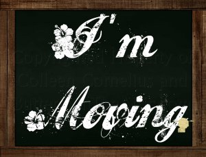 "Set of 6  Postcards Blackboard Greetings - I'm Moving"" - Simple Expressions"
