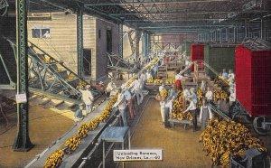 Unloading Bananas, New Orleans, Louisiana, Early Postcard, Unused