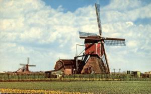 Windmill, Netherlands - Dutch Countryside - DB