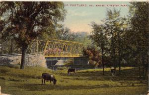 Portland Maine~Bridge Riverton Park~Cows Grazing~1913 Postcard