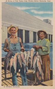 Kentucky Fishing A String Of Fish Taken From Waters Below Kentucky Dam Curteich