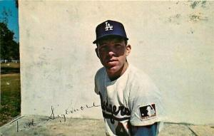 Baseball, Ted Sizemore, Los Angeles Dodgers, Colourpicture No. P96214