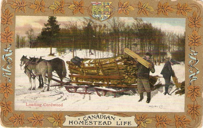Horses Loading cordwood Nice antique Canada postcard