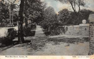 Canton IL~West Elm Street~Brick Sidewalks & Gate~Pile of Bricks or Lumber~1909
