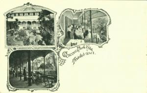 Trinidad B.W.I., Queen's Park Hotel (1899) Litho Multiview Postcard
