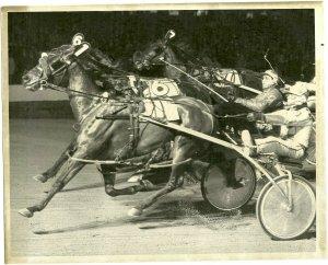 ROOSEVELT RACEWAY, Harness Horse Race , MALICE winner