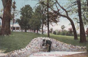 Pennsylvania Philadelphia Natural Spring In Willow Grove 1908