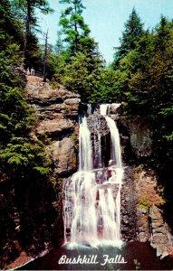 Pennsylvania Pocono Mountains Bushkill Falls