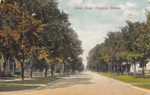 Emporia Kansas~Union Street Homes~Tree-Lined Wide Road~1908 Postcard
