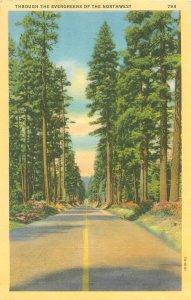 Oregon, Through the Evergreens of the Northwest Linen Postcard