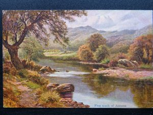 Country Rural Life THE FIRST TOUCH OF AUTUMN c1908 Postcard by Hildesheimer