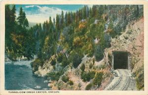 Oregon~Railroad Tunnel: Cow Creek Canyon~1920s Postcard