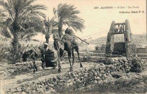 Algerie Algerie MZab Un Puits Posted 03.35