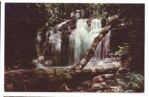 Waterfall Ricketts Glen State Park Wyandot Falls PA