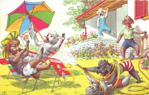 G8/ Animal Postcard Artist Signed Alfred Mainzer Dressed Dogs Umbrella Hose 7