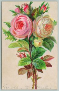 Flowers Greetings~Thorny Pink and White Roses~c1910 Embossed Postcard