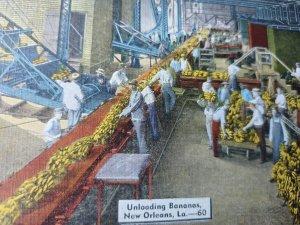 New Orleans Unloading Bananas Vintage Postcard linen natural color unposted