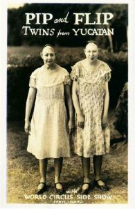 Pip and Flip Pinhead Sisters Coney Island NYC Sideshow Freak Repro Postcard