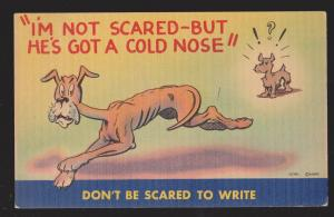 Comic Postcard - Dog With Cold Nose - Used 1945