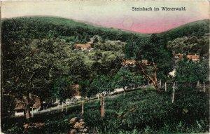 CPA AK STEINBACH im Wienerwald AUSTRIA (676849)