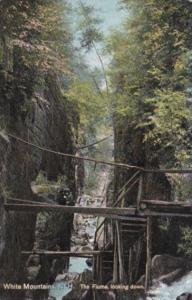 New Hampshire White Mountains The Flume Looking Down 1909