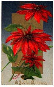 Christmas  , Flowers